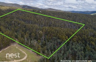 Picture of 180 Doaks Road, Lilydale TAS 7268