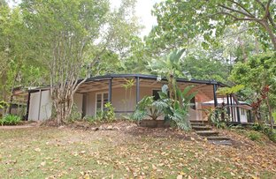 38 William Road, Eumundi QLD 4562