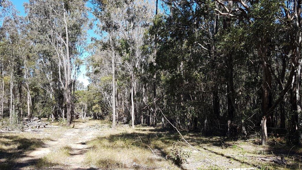 7041 Summerland Way, Myrtle Creek NSW 2469, Image 1