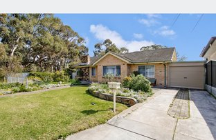 Picture of 1 Arcoona Avenue, Lockleys SA 5032