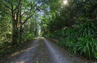 10 Kondalilla Falls Rd, Montville QLD 4560