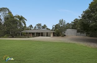 Picture of 308 CABOOLTURE RIVER ROAD, Upper Caboolture QLD 4510