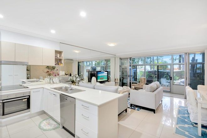 Picture of 40/430-432 Pineridge Road, COOMBABAH QLD 4216