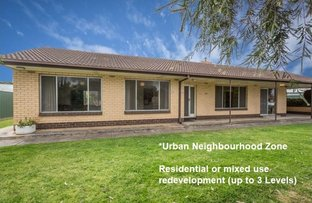Picture of 67A Darley Road, Paradise SA 5075