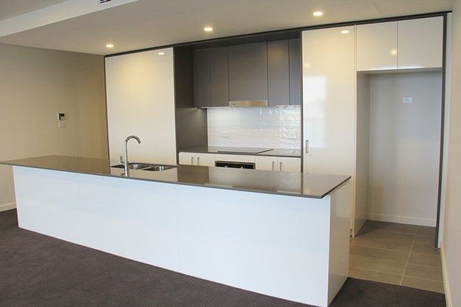 Picture of 51/74 Leichhardt  Street, GRIFFITH ACT 2603