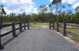 295 Burragan Road, Coutts Crossing NSW 2460