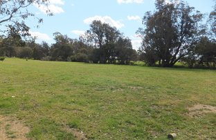 Picture of 24 Hackett Street, Cookernup WA 6220