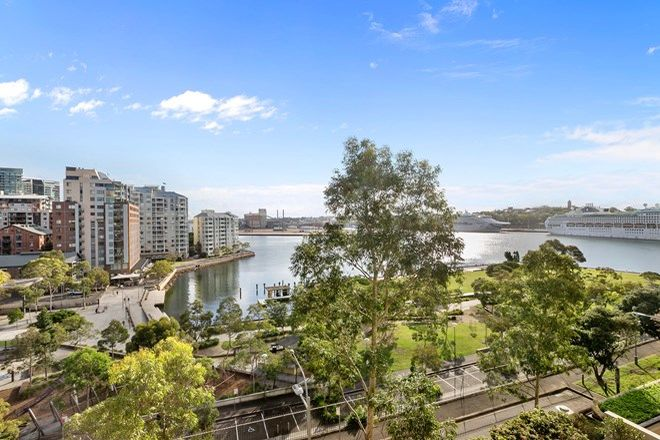 Picture of 33/81 Point  Street, PYRMONT NSW 2009