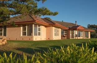 Picture of 135 Groths Road, Springton SA 5235