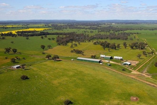 Picture of 449 Willawang Road, WARROO NSW 2871