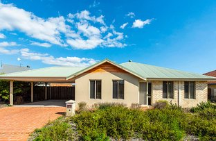 Picture of 10 Rainsby Crescent, Ellenbrook WA 6069