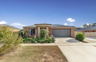 Picture of 3 Edgewater Close, Eaglehawk VIC 3556