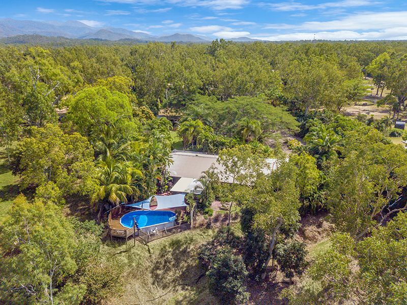 450 Forestry Road, Bluewater QLD 4818, Image 0