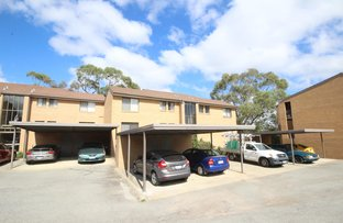 Picture of 36/10 Wilkins Street, Mawson ACT 2607