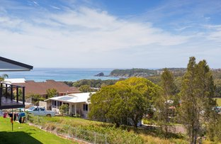 61 Red Head Road, Hallidays Point NSW 2430