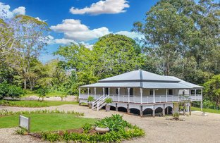 Picture of 239 North Maleny Road, North Maleny QLD 4552