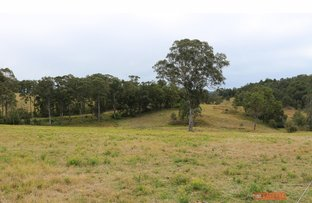 Picture of Lot 12 Baltons Road, Wherrol Flat NSW 2429