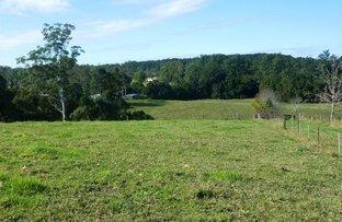Picture of Lot 22/150 Hydes Creek  Road, Bellingen NSW 2454