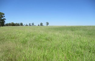 Picture of 1104 ACRES FULLY EXCLUSION FENCED,, Tara QLD 4421
