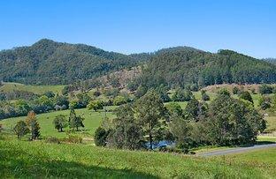 Picture of 2 CARILLA PLACE, Eungella NSW 2484