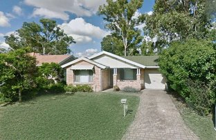 Picture of 6 Pimelea Place, Rooty Hill NSW 2766