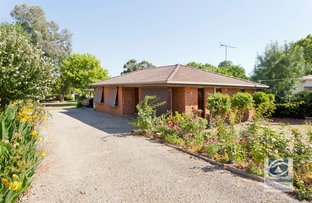 Picture of 8A John  Street, Beechworth VIC 3747