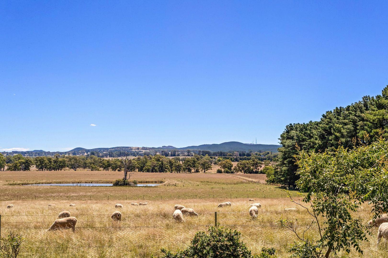 835 Forest Road, Orange NSW 2800, Image 0