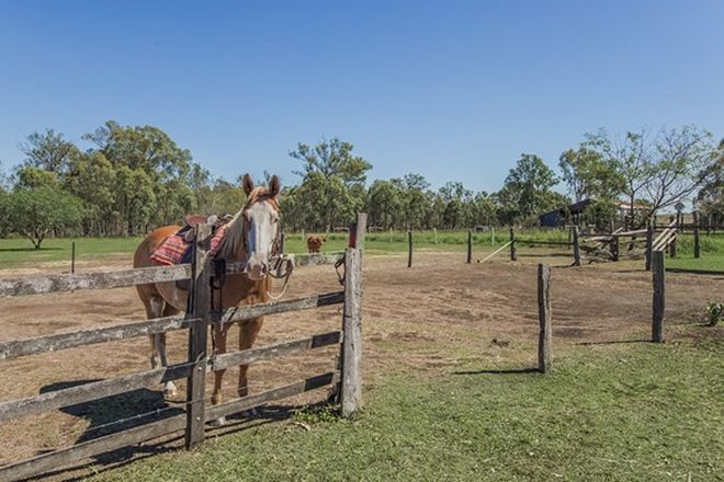 Picture of 681 Ipswich-Boonah Road, PURGA QLD 4306