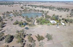 Picture of ' THURN', Coonamble NSW 2829