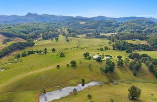 Picture of 24 Bryens Road, Nobbys Creek NSW 2484