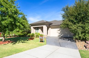 Picture of 37 Ethereal Way, Sandhurst VIC 3977