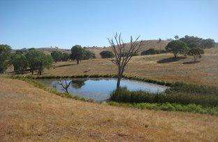 "Picture of ""TABINDA"" – 1892 Fish River Rd, Narrawa via Crookwell, Crookwell NSW 2583"