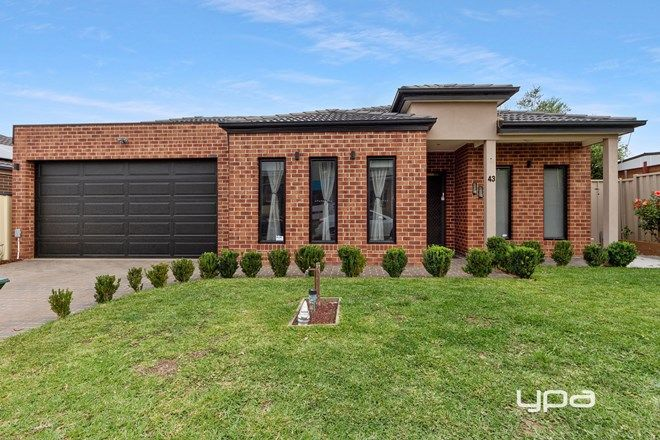 Picture of 43 Katrina Drive, BURNSIDE HEIGHTS VIC 3023