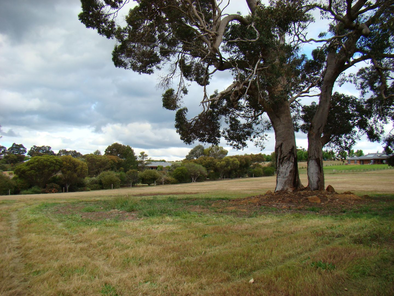 6 Cottonwood close, Kangaroo Gully WA 6255, Image 0