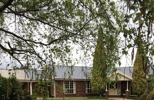 Picture of 10 Sherri Court, Norwood TAS 7250