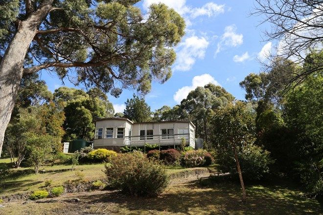 Picture of 62 Old Jetty Road, EAGLEHAWK NECK TAS 7179