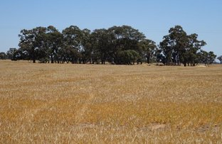 Picture of . Womboota Siding Road, Moama NSW 2731
