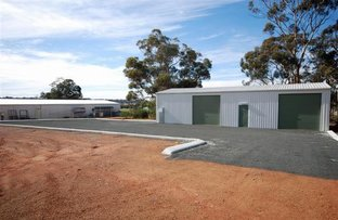 Picture of 270 Lydeker Way, Narrogin WA 6312