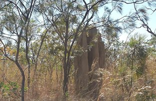 Picture of 610 Leonino Road, Fly Creek NT 0822