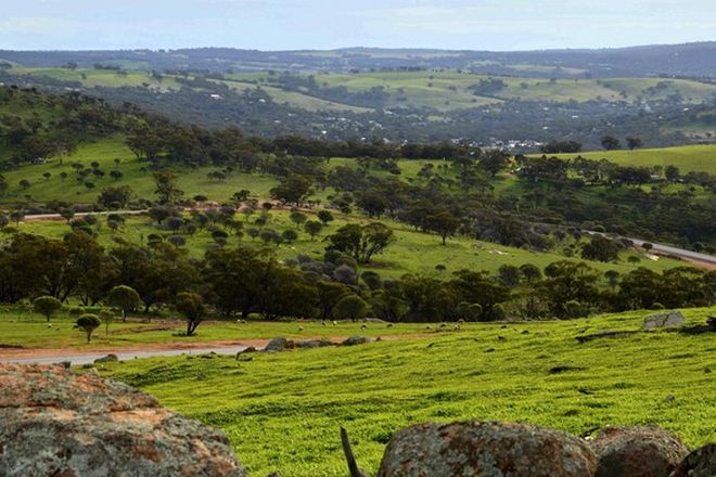 Picture of Lot 117/Nockdominie Road, Whitfield Road, TOODYAY WA 6566