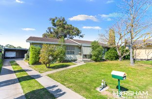 Picture of 17 Puls Place, Horsham VIC 3400