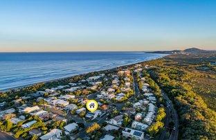 Picture of 46 Oriole Avenue, Peregian Beach QLD 4573