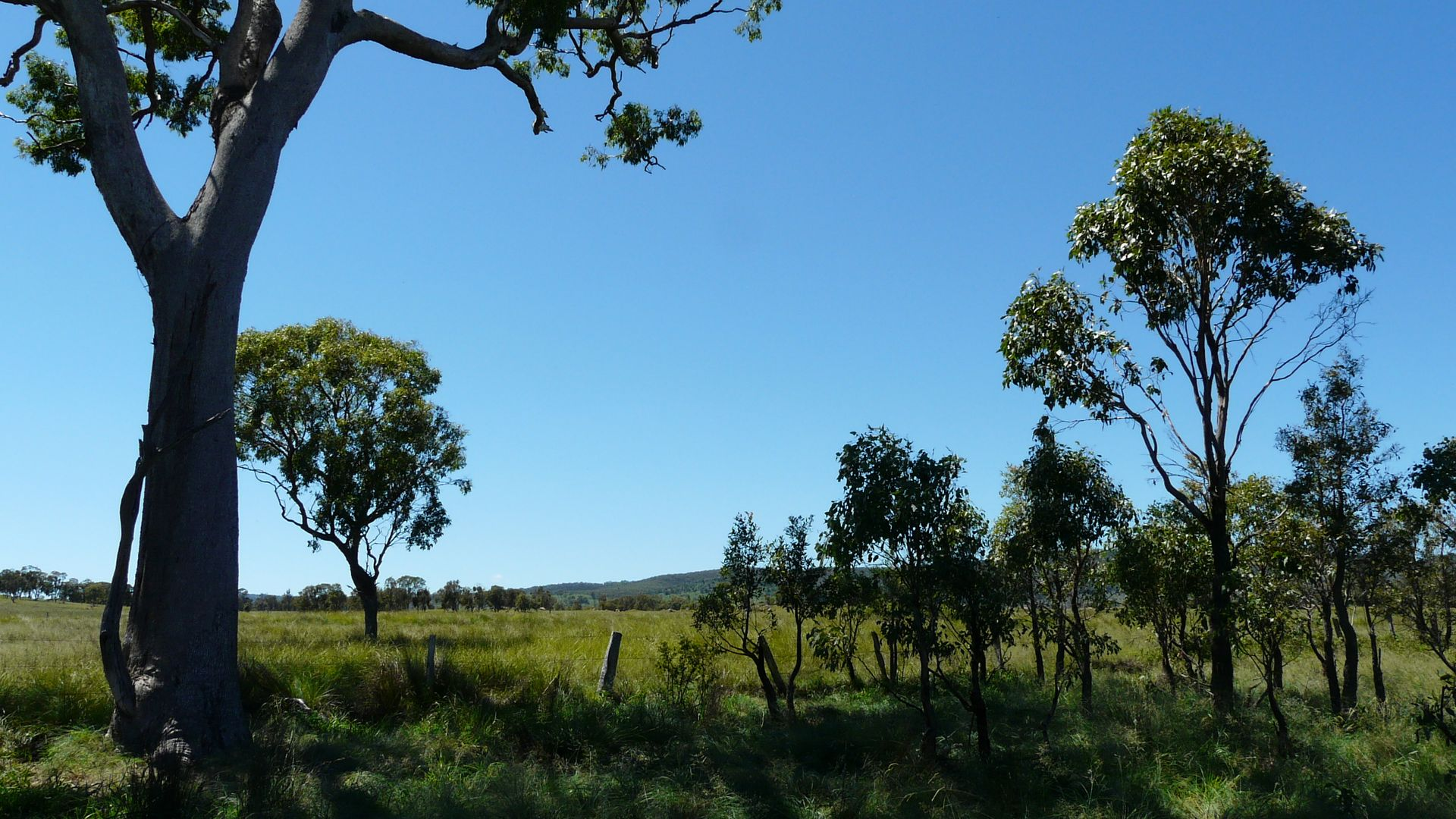 1843 Bruxner Way, Tenterfield NSW 2372, Image 1