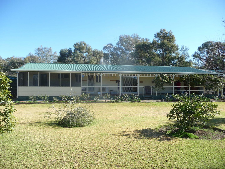 31 Conargo Road, Jerilderie NSW 2716, Image 1