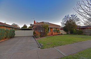 Picture of 10 Collet Street, Shepparton VIC 3630