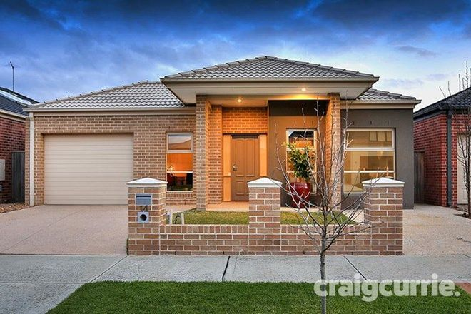 Picture of 14 GOODENIA Street, OFFICER VIC 3809