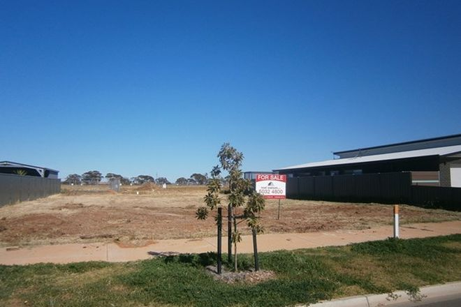 Picture of 9 Sandalwood Avenue, SWAN HILL VIC 3585