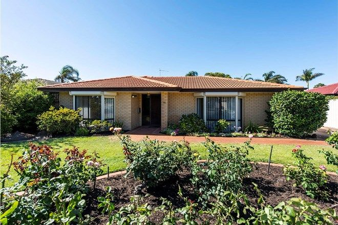Picture of 37 Parkway Road, BIBRA LAKE WA 6163