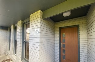 Picture of 7/38 Nicol Street, Yarram VIC 3971
