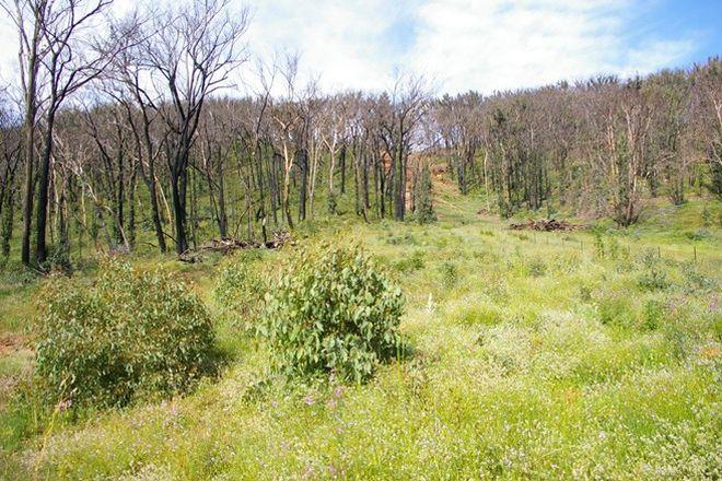 Picture of 1708 Nerstane Road, BENDEMEER NSW 2355